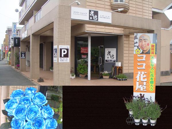 Flower shop 花坊